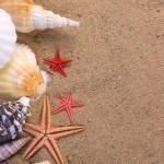 Mit mondanak a tengeri csillagok a nyárra? :-)