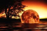 Búcsú a Hold évétől